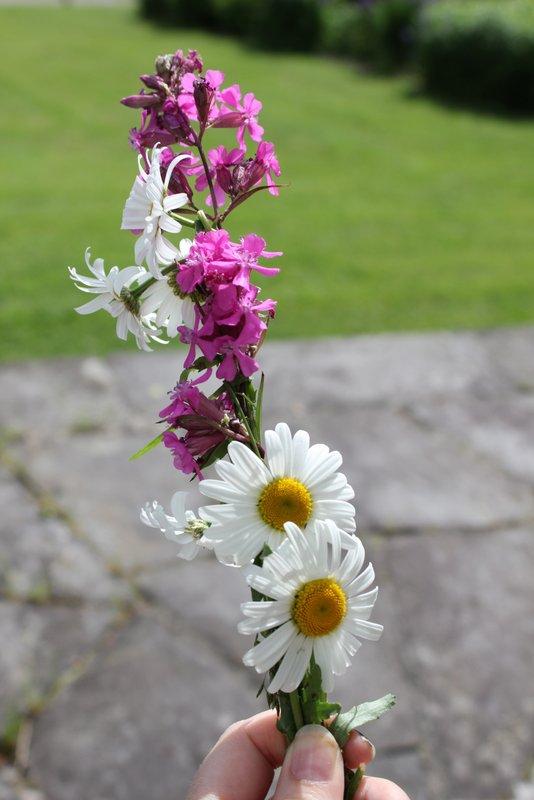 blomsterkrans prestekrage 008-001