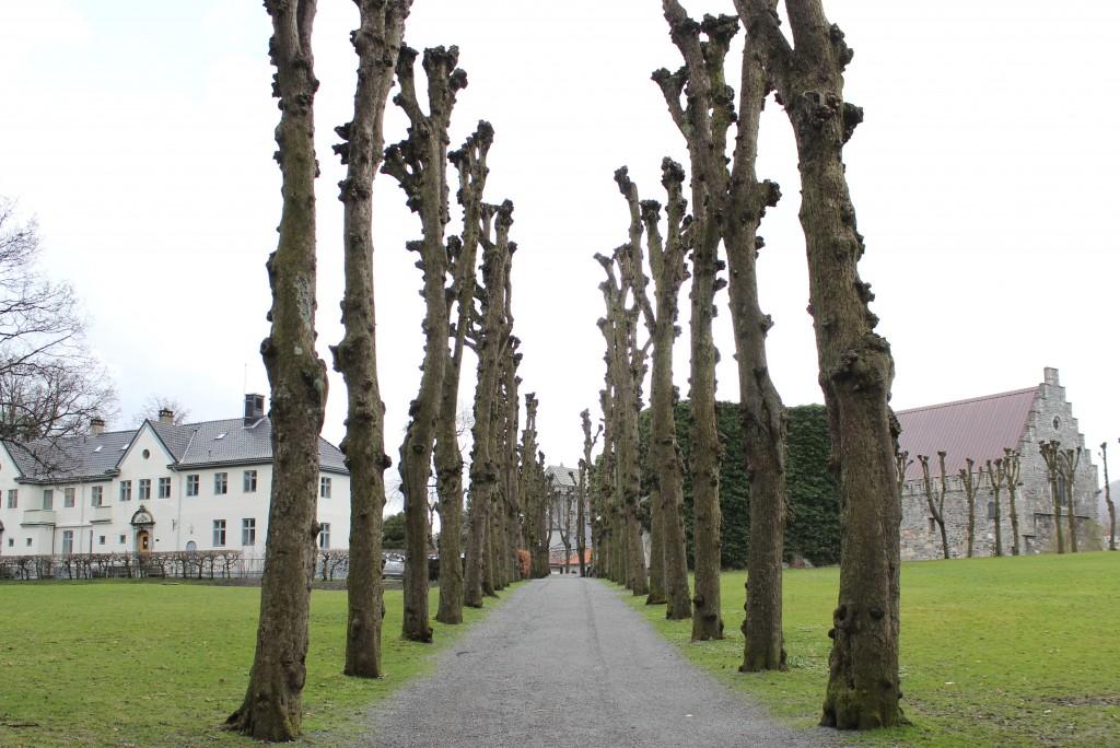 Bergenhus festning - Sverresborg 066