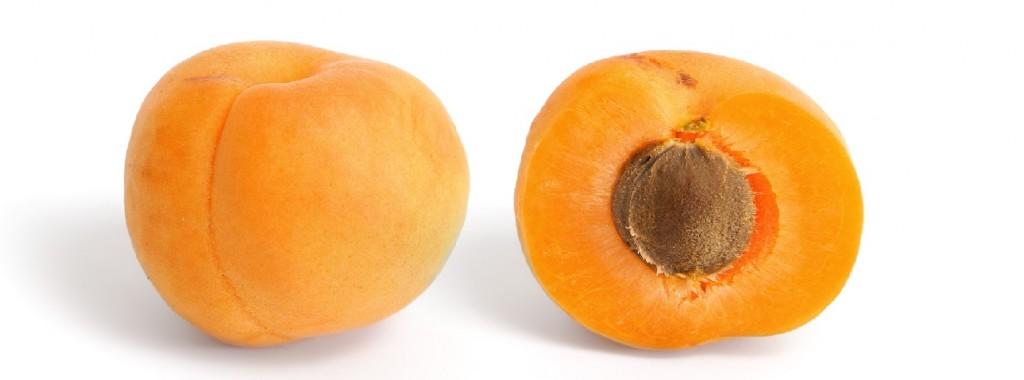 aprikos bilde