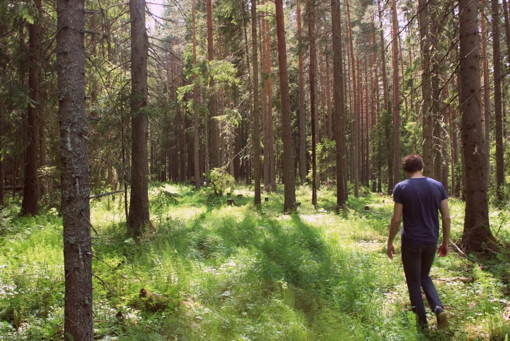 På tur i skogen