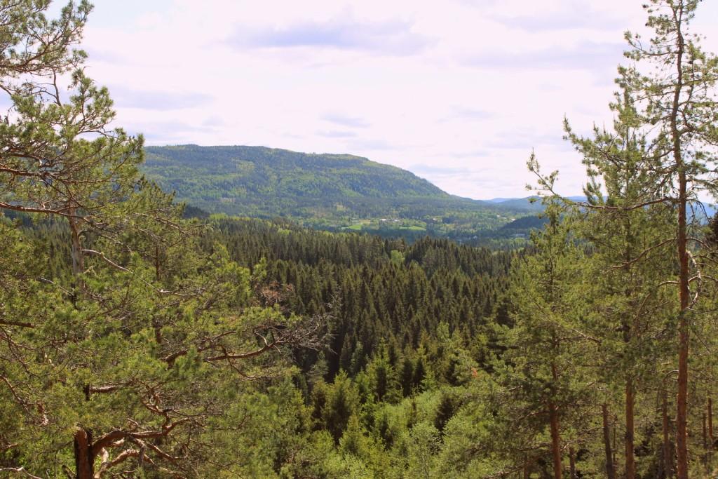 Utsikten fra åsen