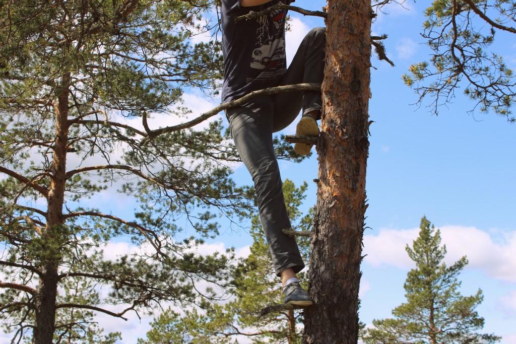 Broren min klatrer i trær