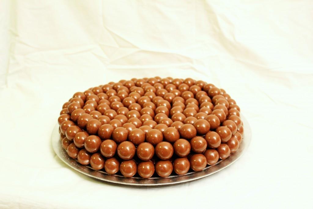 sjokoladekake 013