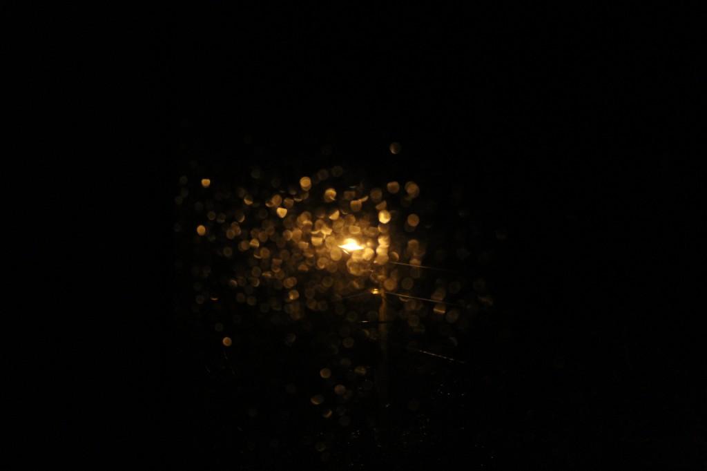 sparkle in rain 014