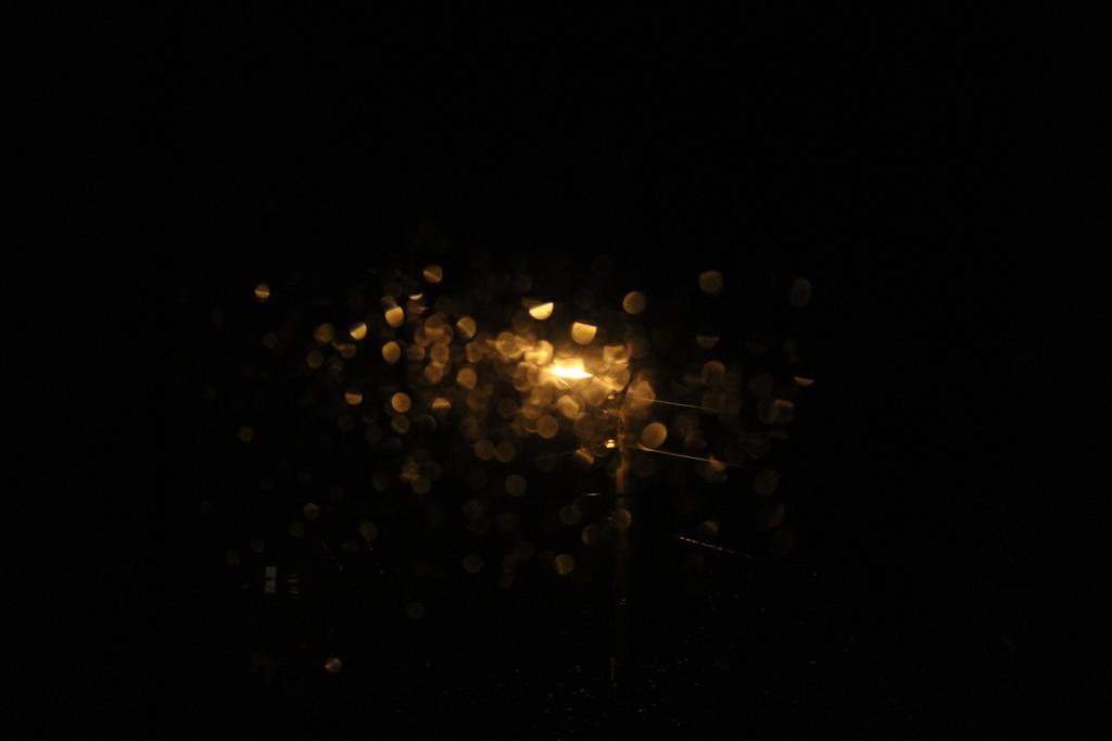sparkle in rain 016