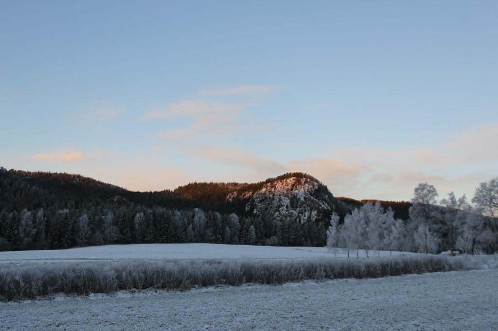vikersund morgen og biscotti 066