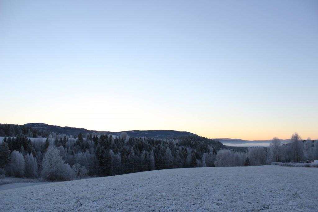 vikersund morgen og biscotti 071